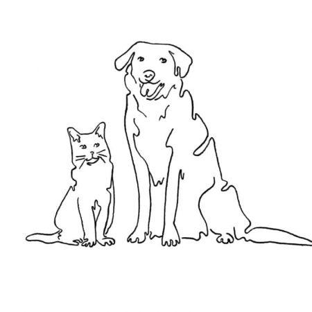 AMOR LUSO - Animal, Sabonete para animais