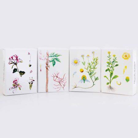 Amor Luso sabonetes naturais herbaria 1