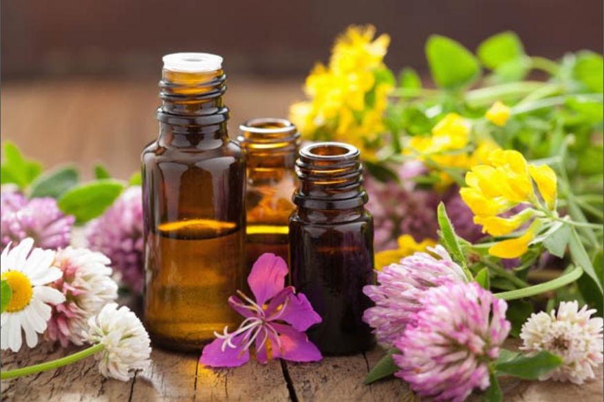 óleos essenciais guia completo